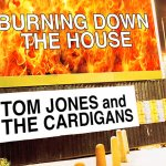 Tom Jones & The Cardigans - Burning Down The House